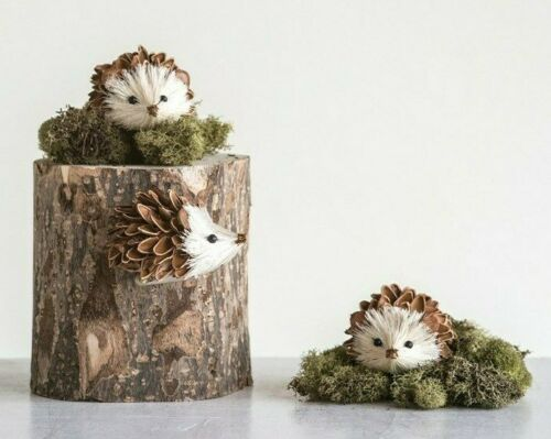 """Creative Co-Op Boxed Set of 3 Hedgehog Clip-On Pine Cone Shell & Sisal 3"""""""