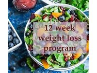FREE tailored 12 week weight loss program