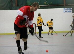 Ball Hockey Goalie Wanted: Tuesday Evenings in Barhaven