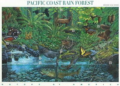 2000 SHEET PACIFIC COAST RAIN FOREST SC 3378