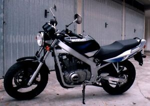 Looking for a Suzuki GS500