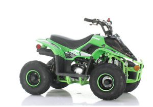 APOLLO VRX 110cc with Reverse  * ONE OF THE BEST* 905 665 0305