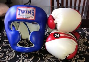 TWINS SPECIAL BOXING HEAD GUARD & KIMURAWEAR BOXING GLOVES