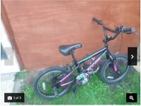 Apollo Boogie Bmx Fully Serviced Ready to Ride Suit Boy or Girl