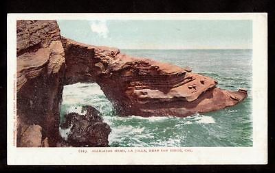 1902 Alligators Head La Jolla San Diego California Landscape Postcard