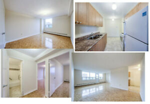 AUGUST 1ST - SCARBOROUGH - 1 LARGE BEDROOM - $735