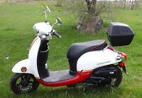 Honda Giorno 2013 Scooter / Moped