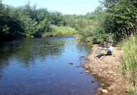 Spectacular Property Only 10 Minutes From Moncton
