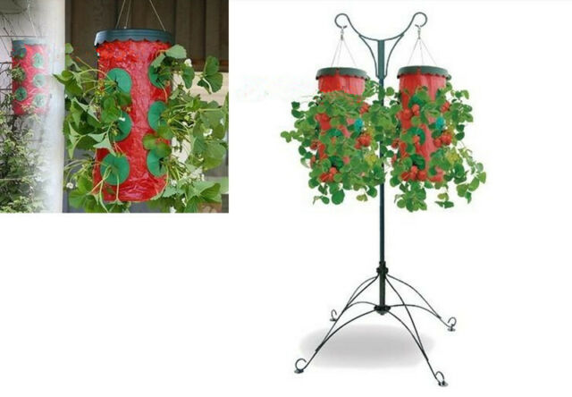 Upside Down Strawberry Planter Topsy Turvy 9 Holes Gardening Supplies Grow  Boxes - Topsy Turvy Upside Down Strawberry Planter EBay