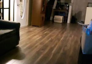 Laminate Flooring & underlay