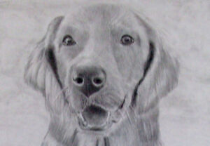 Learn how to draw Animals Easy for beginners.