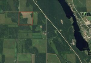 Land for Sale 160 Acres RM of Big River #555