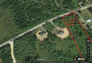 3.67 Acres on Pine Glen. Country living 5 minutes to everything!