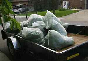 Fall Clean Ups 30$/hr available all week liscenced and inscured Strathcona County Edmonton Area image 3