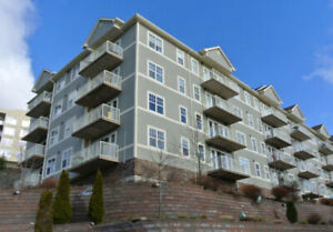 Beautiful 2 Bedroom Apartment Close to Downtown