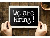 Job Offer - Looking for assistant with van conversion - Carpenter / Electrician / Handyman / Welding