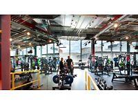 Stratford Gymbox