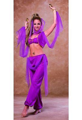 Arabian Princess Sexy Harem Jasmine Genie Belly Dancer Adult Costume (Sexy Jasmine Kostüm)