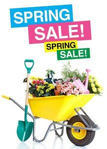 ***PLANT SALE ON NOW*** Huntfield Heights Morphett Vale Area Preview