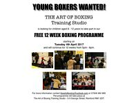 YOUNG BOXERS WANTED FOR FREE BOXING PROGRAMME