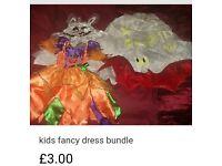Girls fancy dress bundle 2-3 years
