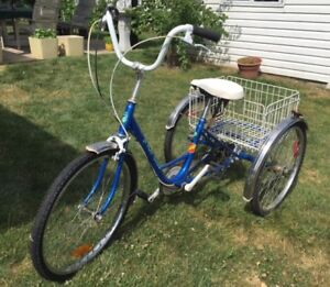 """23"""" 3 Wheel Adult Tricycle 6 Speed Blue with Basket - Used"""