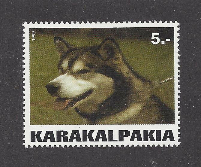 Dog Photo Head Portrait Postage Stamp ALASKAN MALAMUTE Karakalpakia 1999 MNH