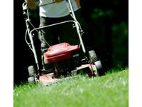 Grass and Hedge Cutting Services