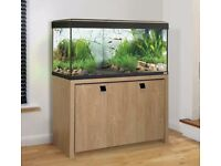 Beautiful Fluval Roma 200L Aquarium set containing everything you need, and more