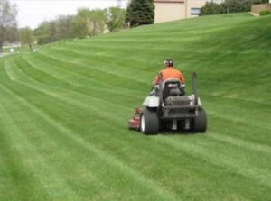 Best price for lawn maintenance  London Ontario image 1