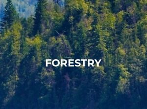 QUALITY PRODUCTS FOR THE FORESTRY & TIMBER INDUSTRY