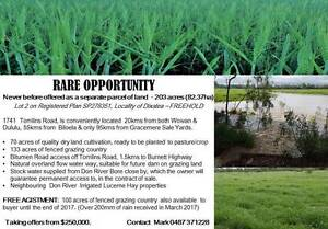 TAKING OFFERS NOW - DON'T MISS OUT Dixalea Banana Area Preview