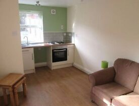 Refurbished One Bedroom Garden Flat in the Centre of Uplands