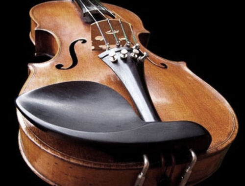 Violin Stradivarius 1723 Copy German 1880 Professional