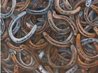 Horse shoes wanted approximately 20