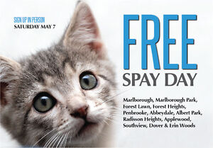 FREE SPAY/NEUTER SURGERY FOR FOREST LAWN & AREA CAT OWNERS!