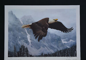 """Limited Edition """"Rocky Mountain High"""" by Ervin Molnar"""