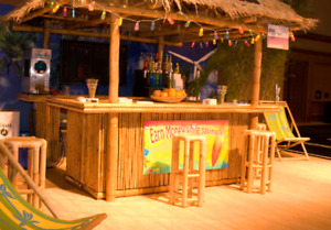 Beautiful Tiki bar complete with 4 stools