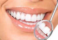 Professional Dental Teeth Cleaning