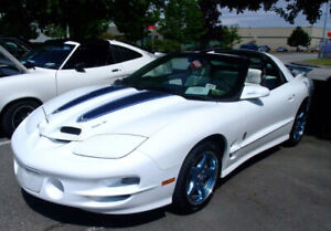 WANTED 30th Anniversary Trans AM