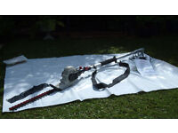 Eckman Electric Telescopic Hedge Trimmer - Model ETHT3