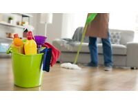 Great cleaner ready to help clean your house, flat