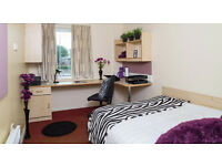 Room available in luxury Warehouse Apartments! All Bills included and en suite bathroom!