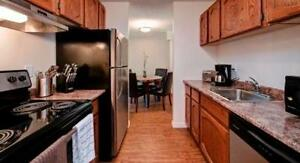 One Bedroom Suites Woodlands Manor for Rent - 1825 Woodview... Calgary Alberta image 4