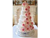 Wedding Cakes and Cupcakes that taste and look wonderful! Free Delivery & Set Up