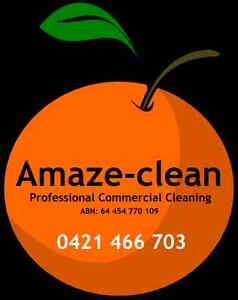 Amaze-clean Clifton Hill Yarra Area Preview