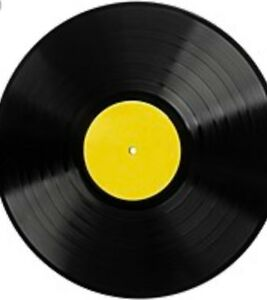 160 + house vinyl records  $1,000.00