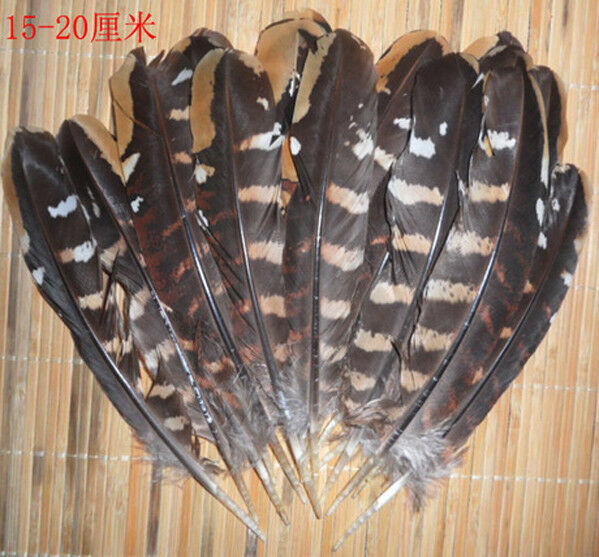 2-4 inches long Wholesale 10-100 computer beautiful pheasant feather 5-10 cm