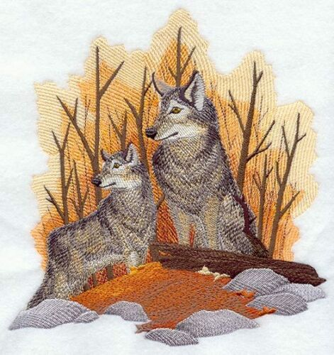 Embroidered Sweatshirt - Autumn Wolf Pair D2258