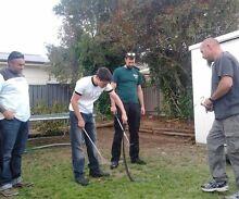 Venomous Snake Courses Highbury Tea Tree Gully Area Preview